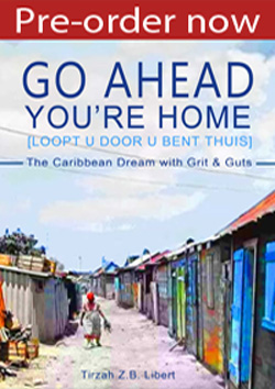 Go Ahead. You're Home - Pre-Order